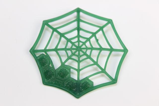 蜘蛛の巣原型